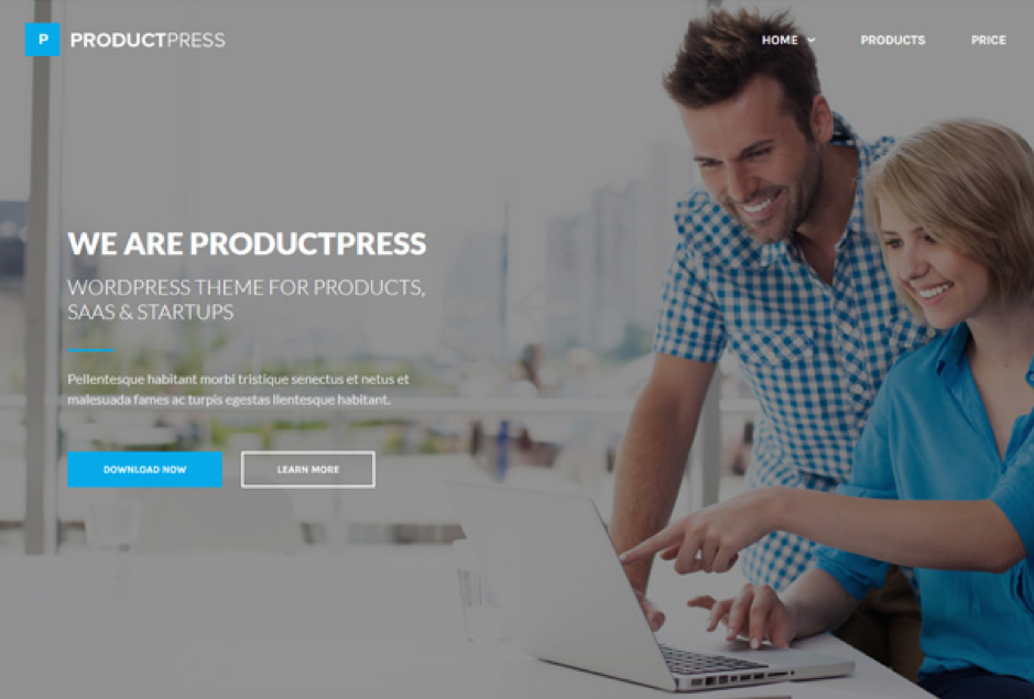 ProductPress Easy Digital Downloads WordPress theme
